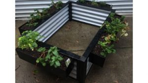 Metal Garden Bed on Ground