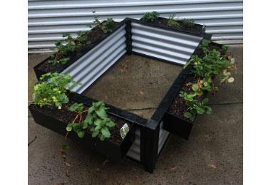 Metal Garden Bed on Ground